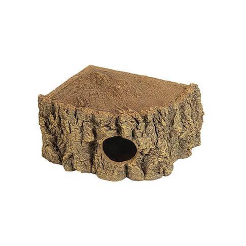 Reptilien Eckhöhle Bark