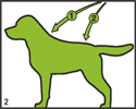 bogar-hunde-big-2