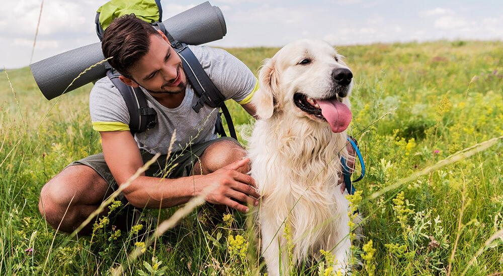 Wandern & Joggen mit Hund