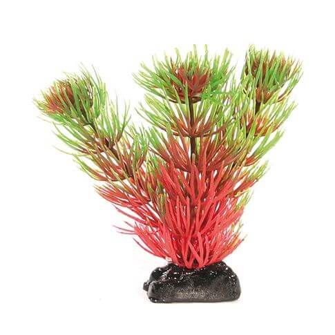 Kunststoffpflanze Fantasy Plant Nano grün-rot