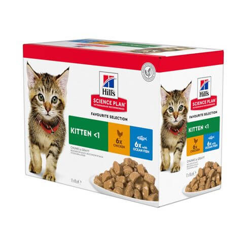 Hill's Science Plan Katze Kitten Multipack Huhn & Meerfisch