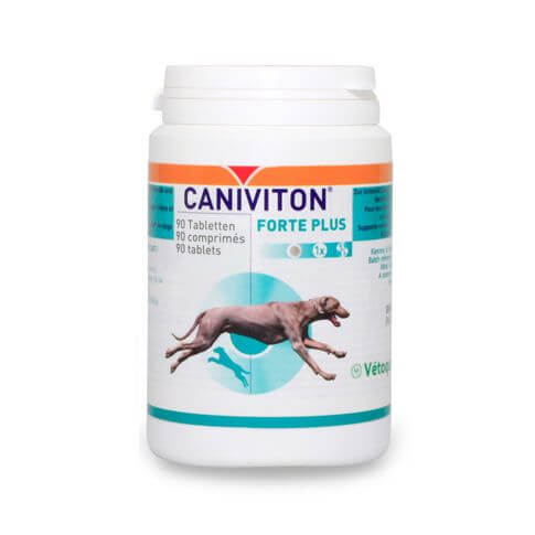 Caniviton Forte Plus Tabletten