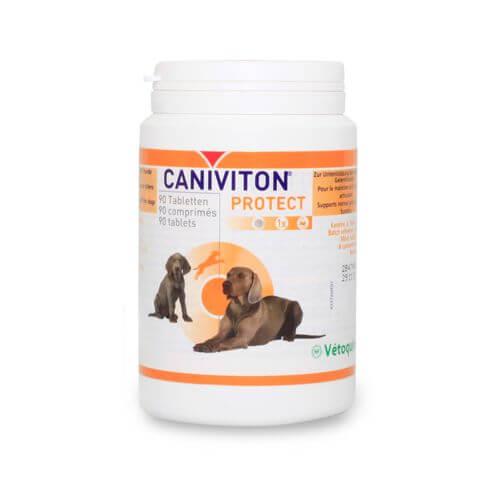 Caniviton Protect Kautabletten