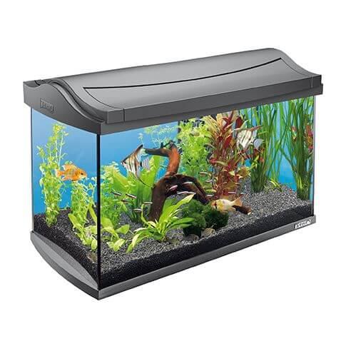 Tetra Aquarium-Set Discover Line 60 Liter