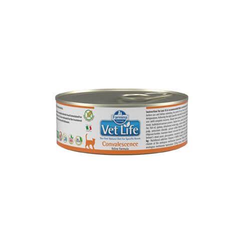 Feline Adult VetLife Convalescence