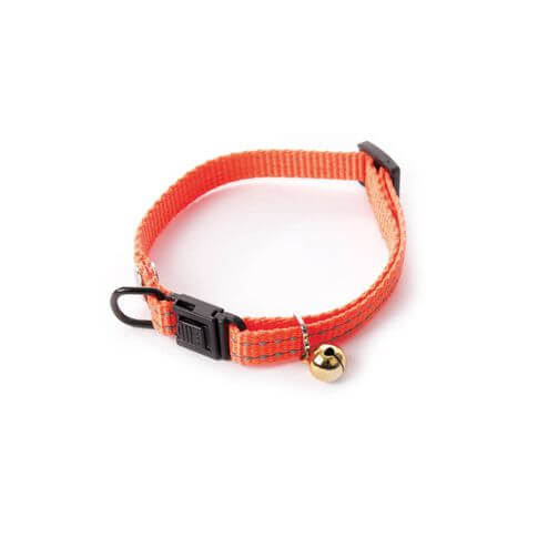 Martin Sellier Flash Katzenhalsband orange