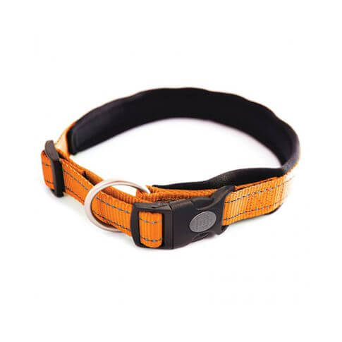 Arka Haok Hundehalsband - Nèo orange