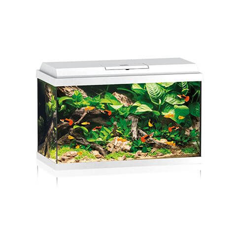 Juwel Aquarium Primo 70 LED