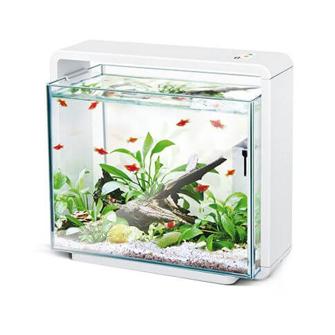 Amazonas LED Aquarium E40