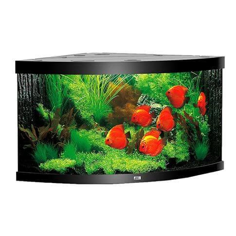 Juwel Eck-Aquarium Trigon 350 LED