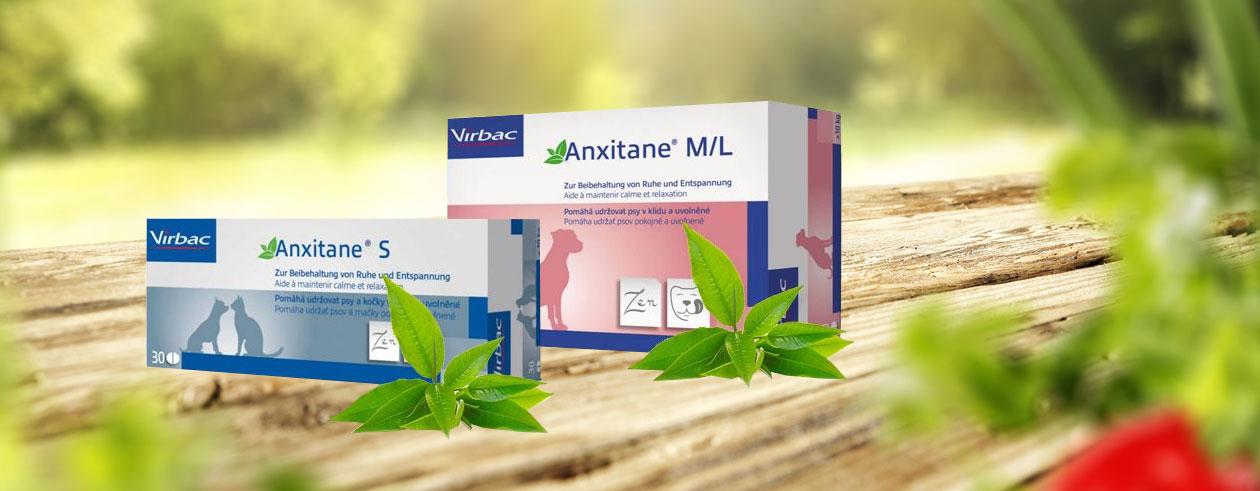 anxitane-gruener-tee-beruhigung-2
