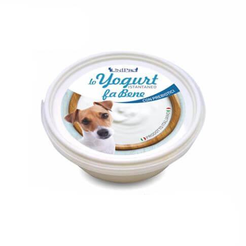 Yogurt für Hunde
