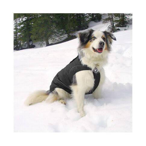 climaro Hundesoftshelljacke