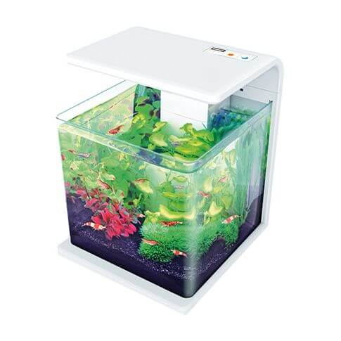 Amazonas LED Aquarium E15 weiss