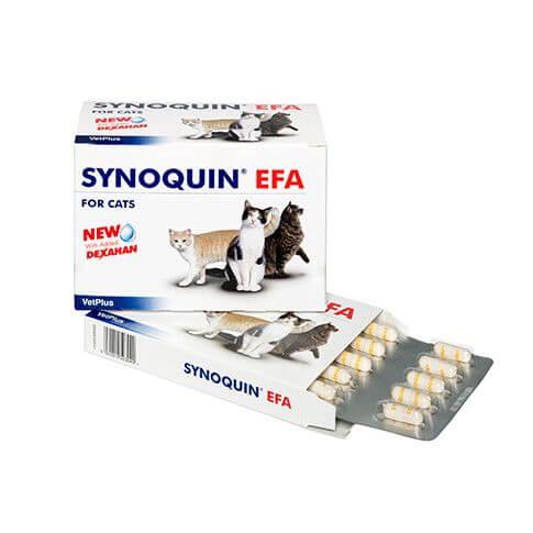 Synoquin EFA für Katzen