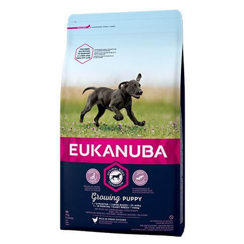 Eukanuba Puppy Large mit Huhn