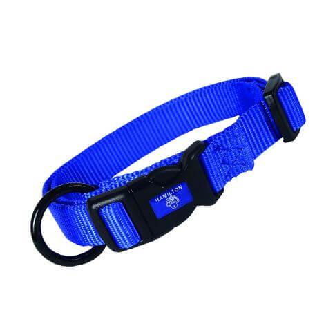 Hundehalsband Blau