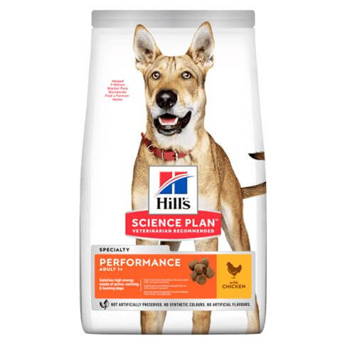 Hill's Science Plan Hund Adult Performance Huhn