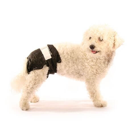 Doggy Pamy's Einweghundewindeln
