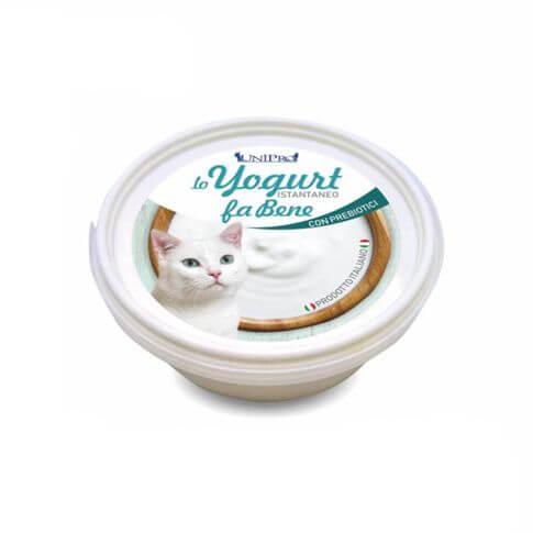 Yogurt für Katzen