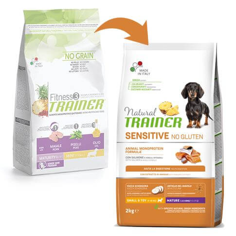 Sensitive Dog Maturity Mini mit Lachs