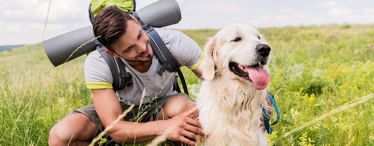 wandern-mit-hund-vorbereitung-intro