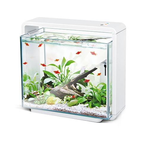 amazonas led aquarium e40 g nstig im shop kaufen. Black Bedroom Furniture Sets. Home Design Ideas