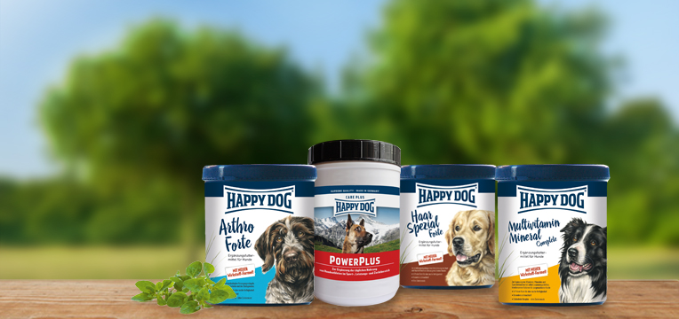 banner-kuren-happy-dog