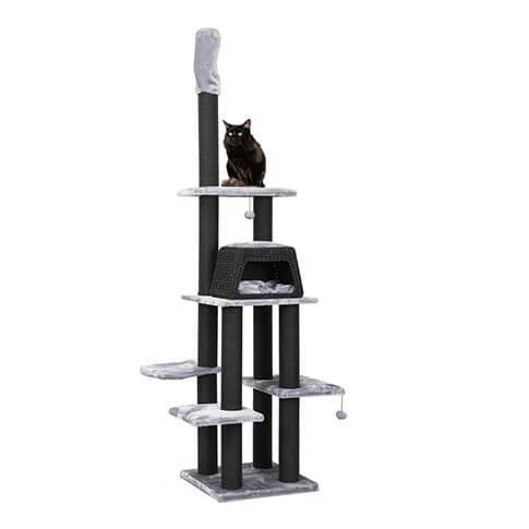 Katzenbaum Black Varys