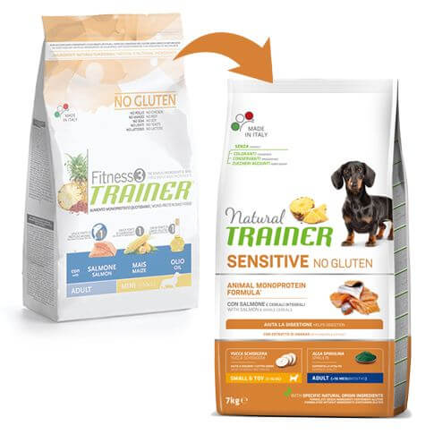 Sensitive Dog Mini mit Lachs