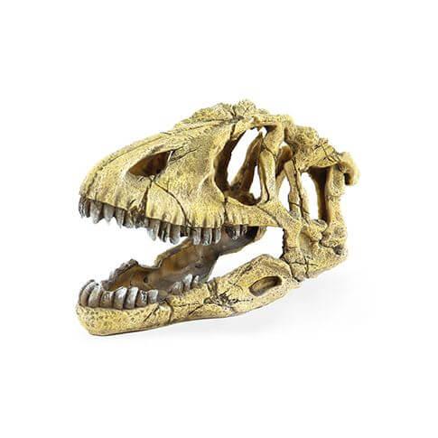 Amazonas Saurus-Skelett