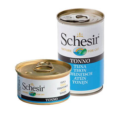 Schesir Thunfisch in Jelly