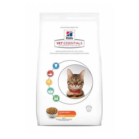 Feline Young Adult mit Huhn