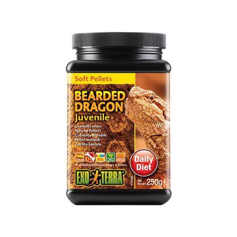 Exo Terra Bearded Dragon Alleinfutter