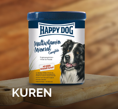 kuren-happy-dog