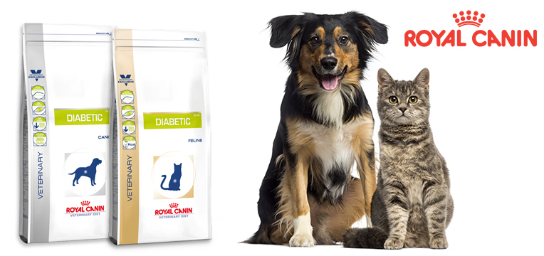 royal-canin-diabetic